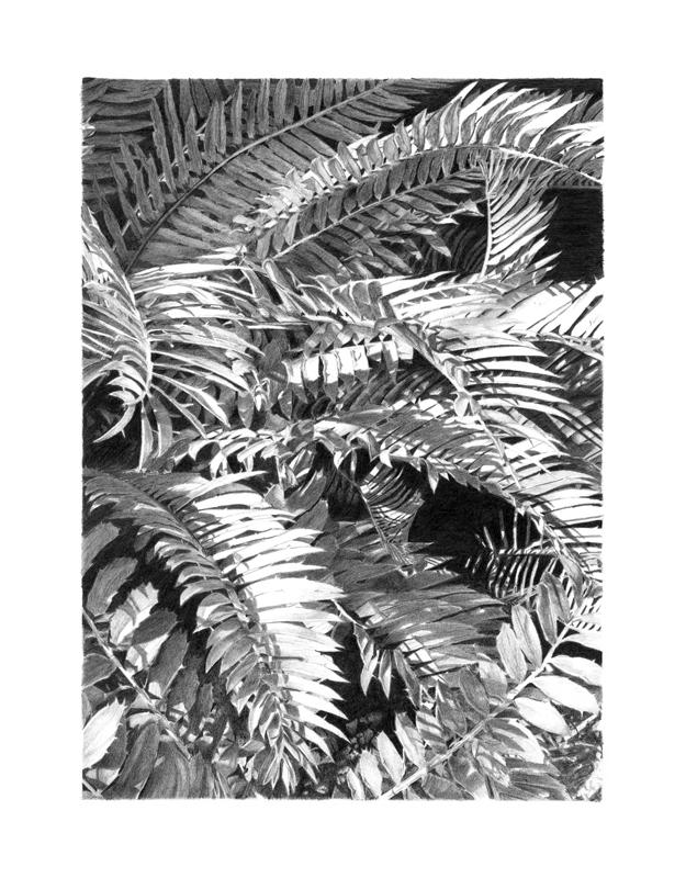 arborescence#02